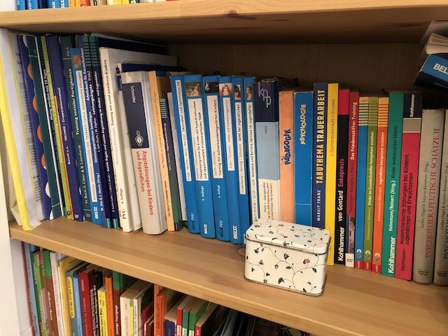 Bücherregal im Sprechzimmer