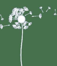 logo2 pusteblume